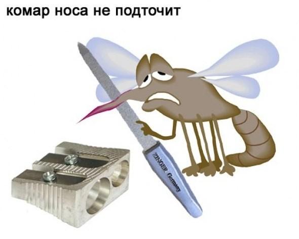 Ellyustrirovannye_pogovorki003