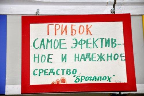 prikol'nie_viveski013