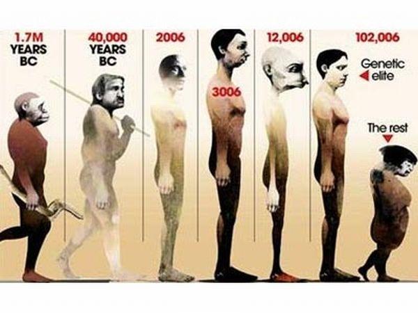 evoluciya009