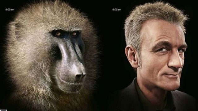 evoluciya014