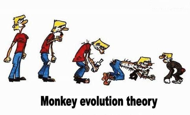 evoluciya017