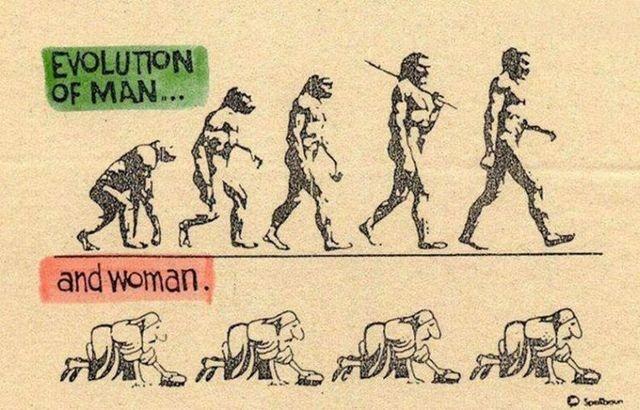 evoluciya023