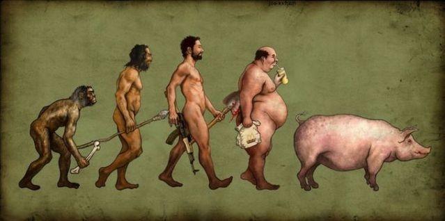 evoluciya024