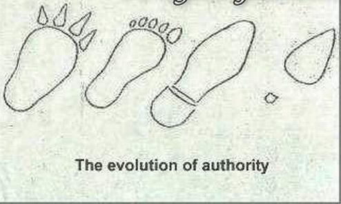 evoluciya026