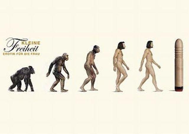 evoluciya032