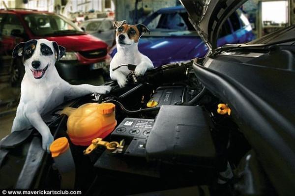 funy_dogs_mechanics_002