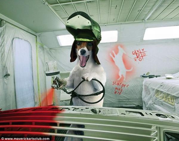 funy_dogs_mechanics_005