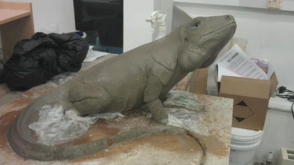 iguana-0006