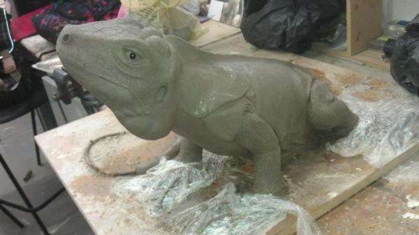 iguana-0007