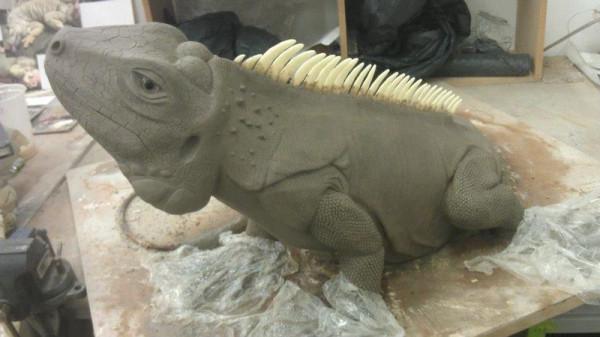 iguana-0008