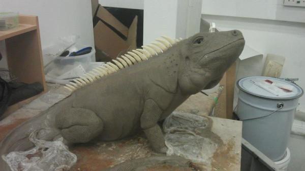 iguana-0010