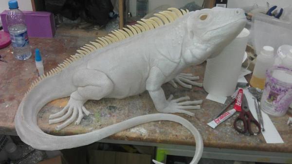 iguana-0016
