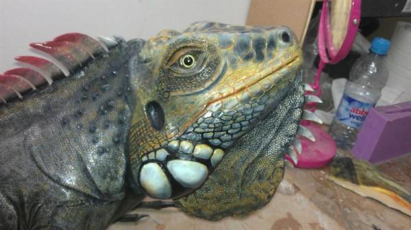 iguana-0019