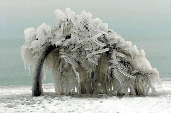 ice_storms_10