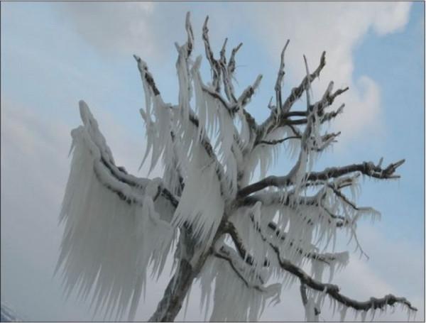 ice_storms_25