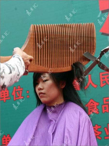 giant_comb_08