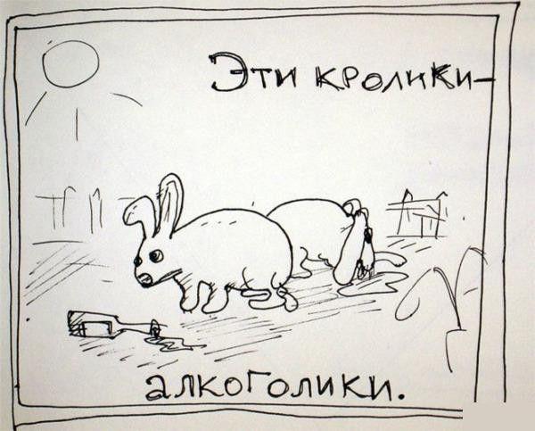 privichka010