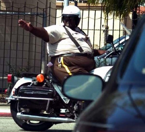 fat_cops_02