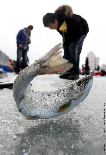 ice_fishing_14