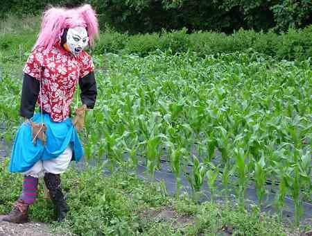 Scarecrow_07