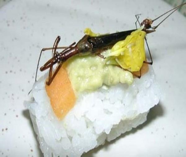 sushi005
