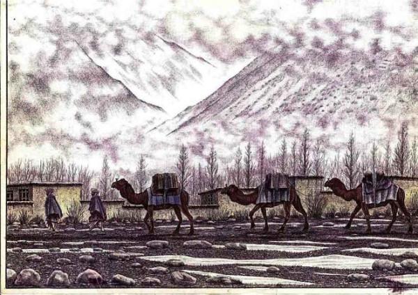 afgan_album_13