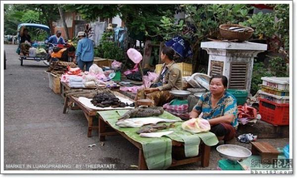 asian_market_08