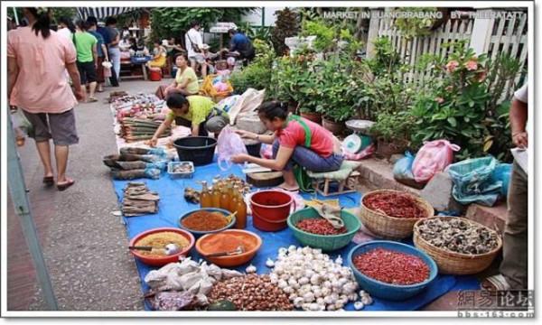 asian_market_15