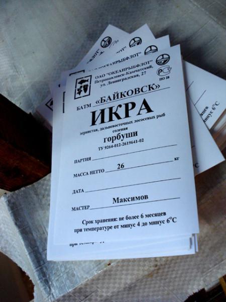 ikra-0011