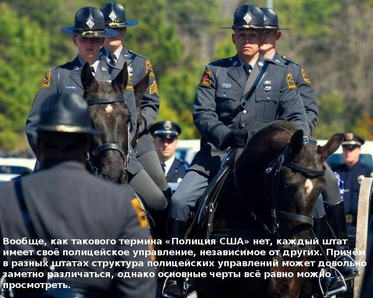 policiya-001