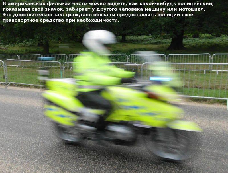 policiya-008