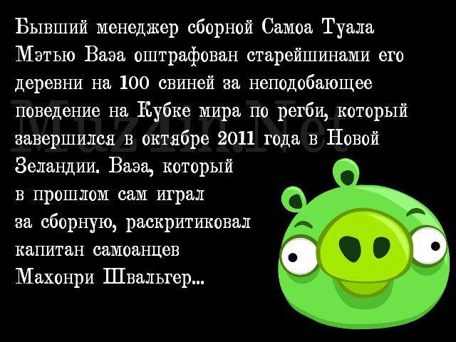 novosti-0009