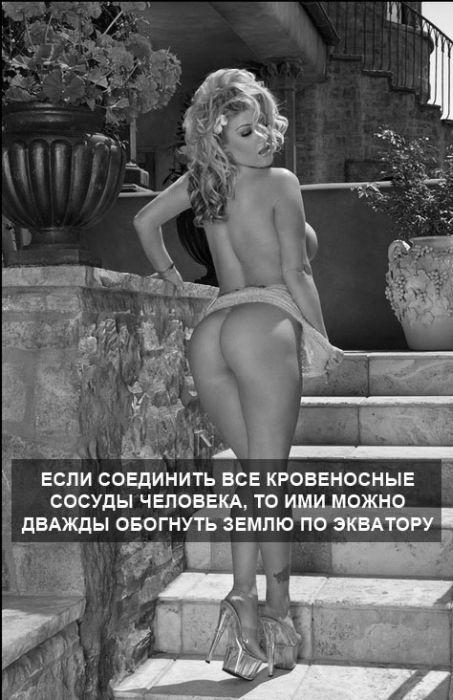 devushki-0017