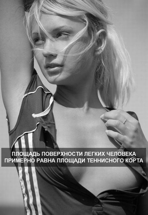 devushki-0019