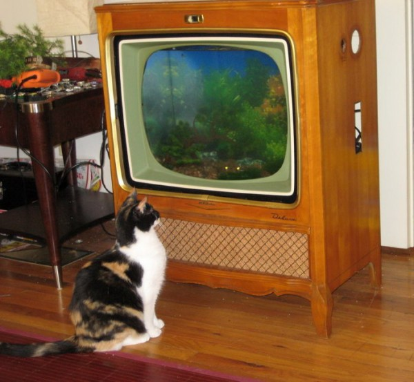 018_old_tv