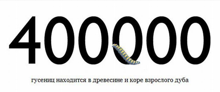 cifra-0002