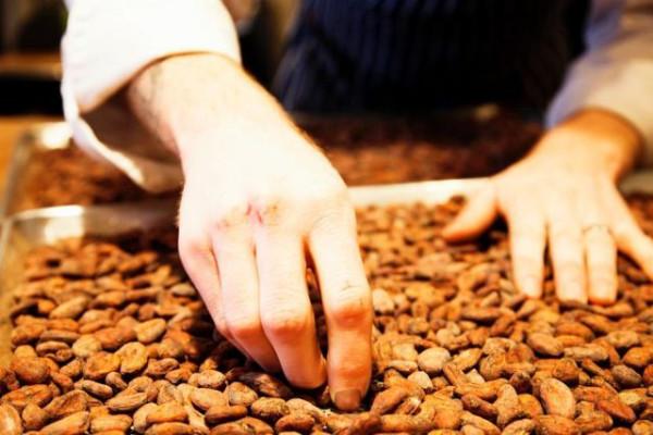 chocolate_factory_13
