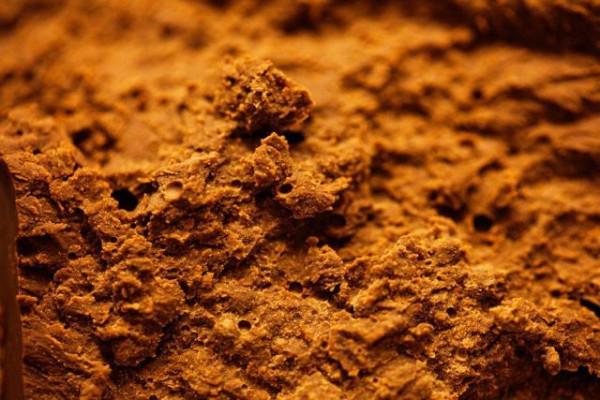 chocolate_factory_42