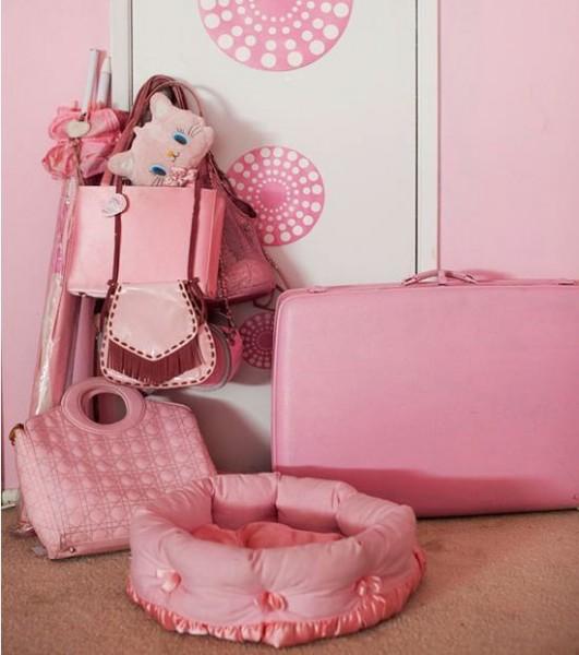 pink_lady_14
