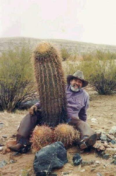 Cactus_07