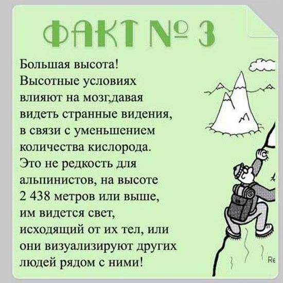 Brain_15