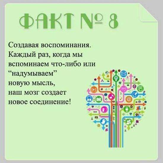 Brain_10