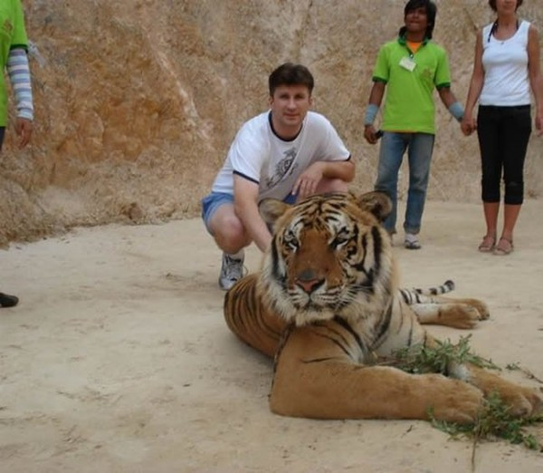 010_tiger_temple