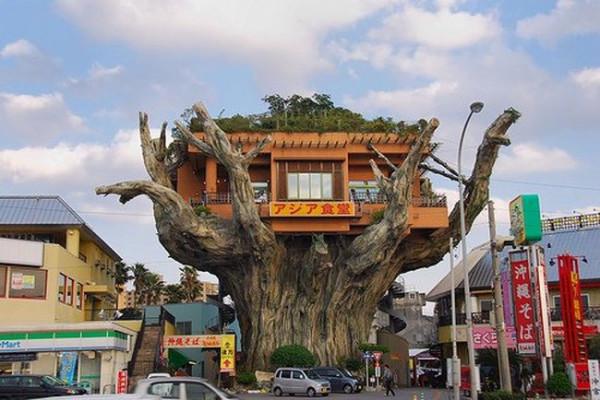 004_house_tree