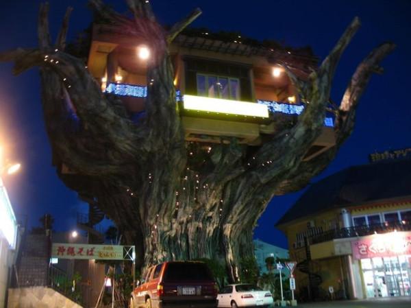 005_house_tree