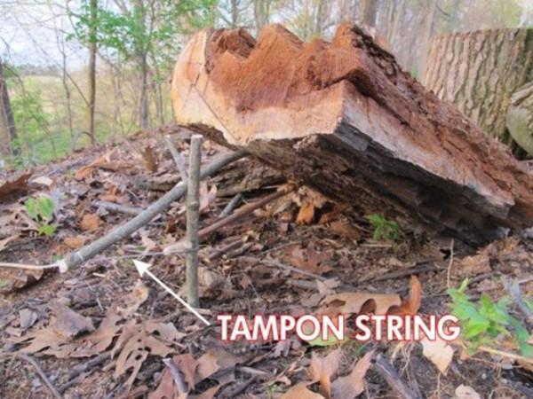 tampon-010