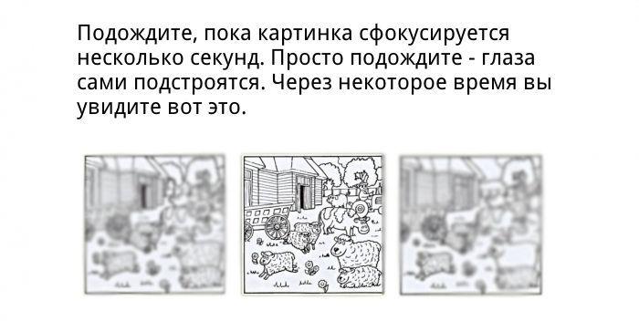 kartinka-0005