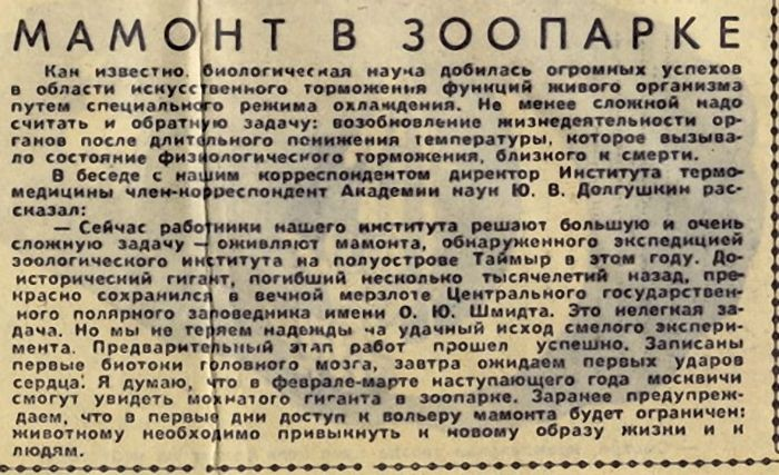 gazeta019
