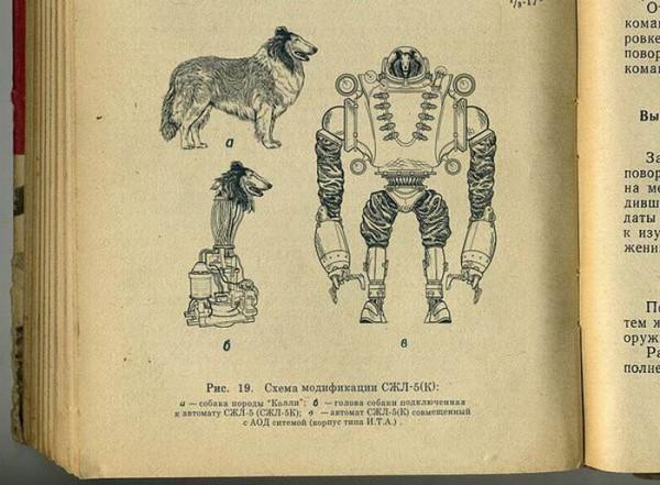 biorobot-003