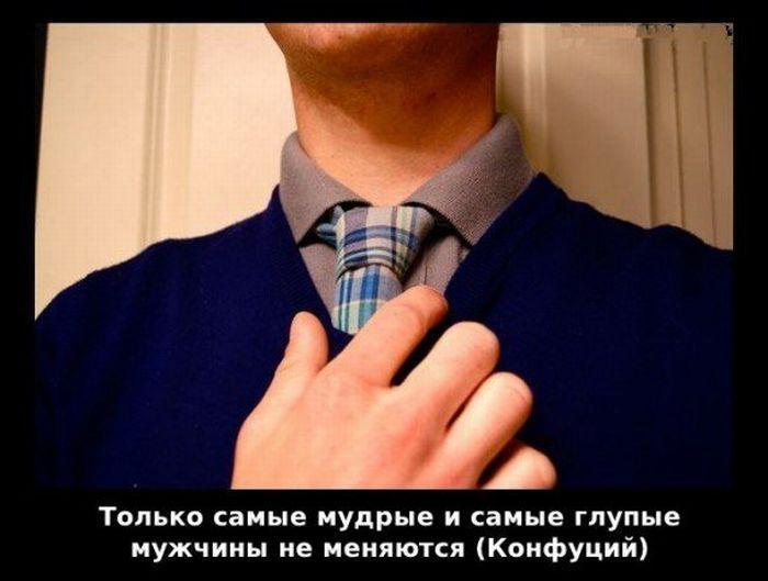 viskazivaniya-0014